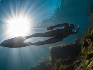 Private Freedive Course