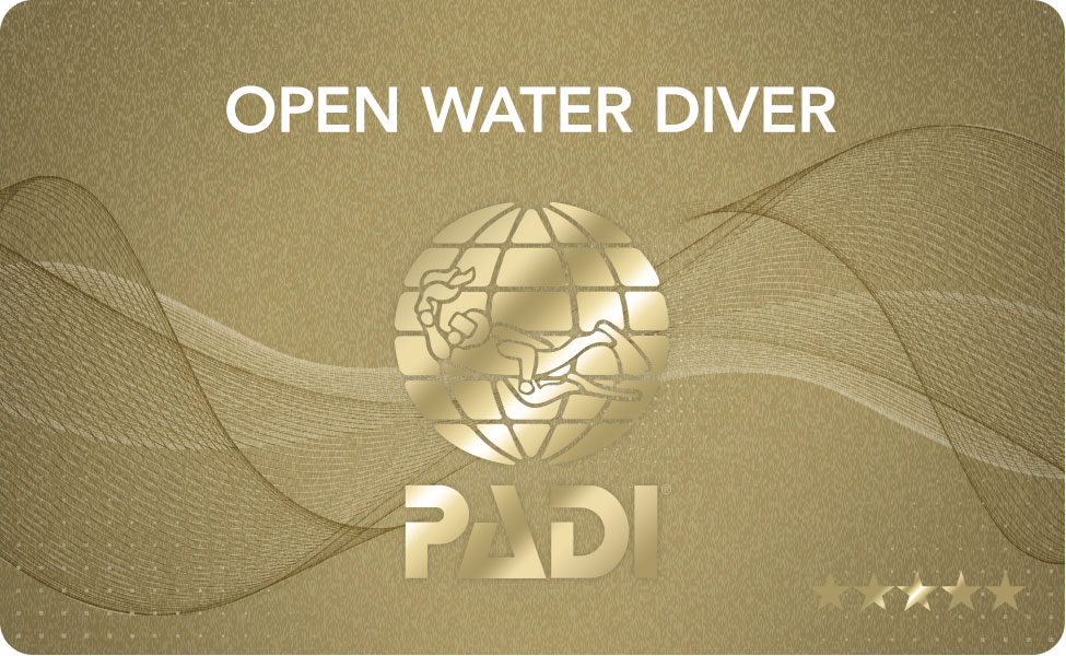 Openwater Diver (Monday-Tuesday)