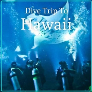 Hawawii Dive Holiday