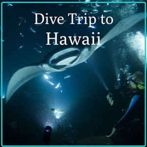 Hawaii Guided Trip