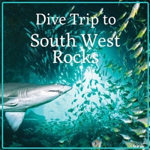 South West Rocks Dive Trip