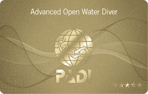 Advanced Openwater Diver