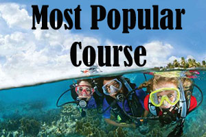 Most Popular Padi Certification Course