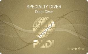 Deep Diver Specalist