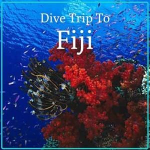 Fiji Dive Holiday