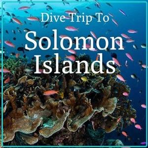 Solomon Island Dive Trip