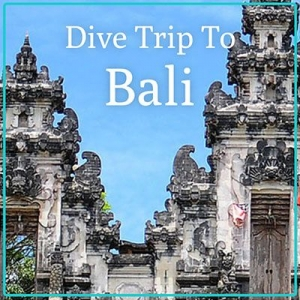 Bali Dive Holiday