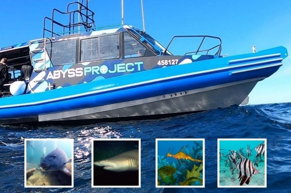 A Dive Boat For Sydneys Needs