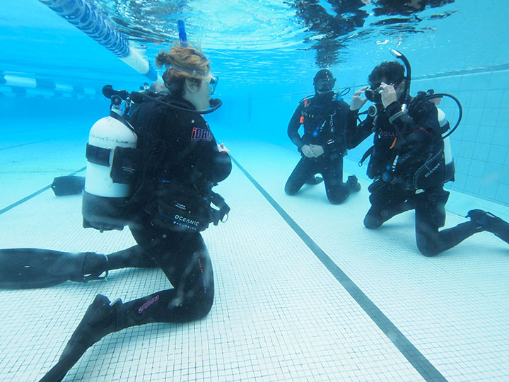 Where Should I Complete My Divemaster Training
