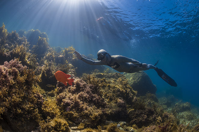 Freediving Questions Explained