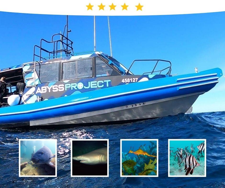Abyss  Scuba Boat