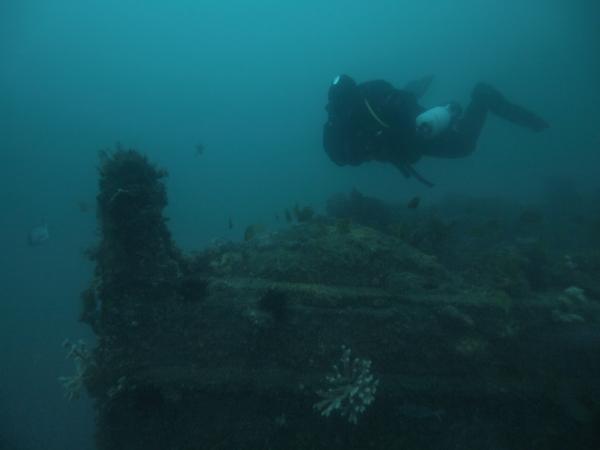 Currajong Shipwreck