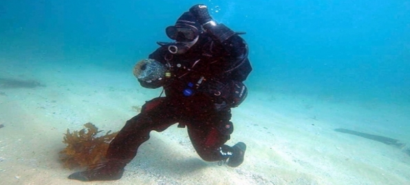 Courteous Diving – Dos And Don'ts