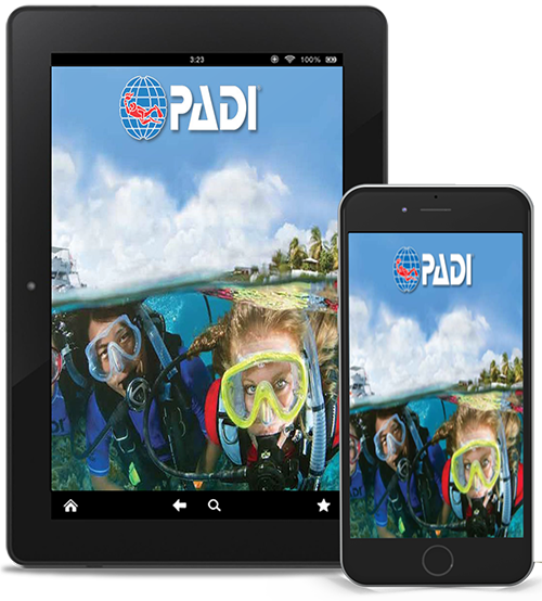 PADI Introductory Course