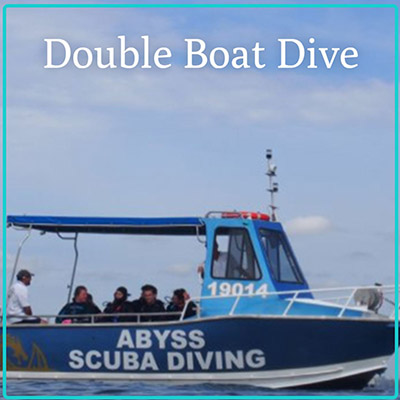 Gift Certificate - Double  Boat Dive