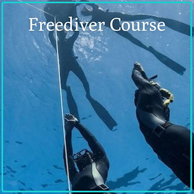 Gift Certificate - Freediver Course