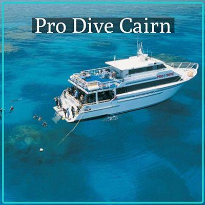 Prodive Cairns