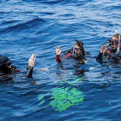 Dive Holidays for beginner divers