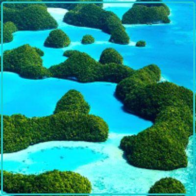 Palau Liveaboard