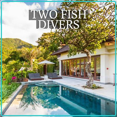 Two Fish Divers Amed