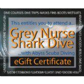 Shark dive Gift Certificate